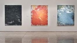 Aida Tomescu, 'Laverty 2' Installation View 2011, Newcastle Art Gallery